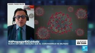 Actualmente la variante G614 es la que constituye el nuevo coronavirus, siendo más infecciosa y rápida que la variante original detectada en China.
