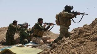 القوات العراقية ومقاتلون شيعة في عملية ضد تنظيم الدولة الإسلامية، الأنبار في 19 ايار/مايو 2015