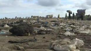 Les victimes ivoiriennes du Probo Koala dénoncent une dépollution incomplète des sites, le 19 août 2016.