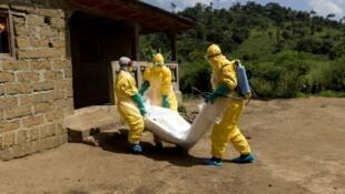 """فرق طبية متخصصة في التكفل بضحايا وباء """"الإيبولا"""" بأفريقيا"""