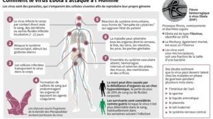Données sur le virus Ebola