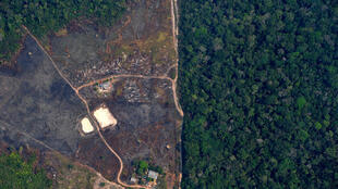 Destruction of the Amazon rainforest in Brazil is largely caused by illegal logging, mining and farming on protected lands