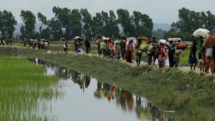 Des Rohingya ayant fui la Birmanie arrivent dans la ville bangalie de Teknaf, le 7 septembre 2017.