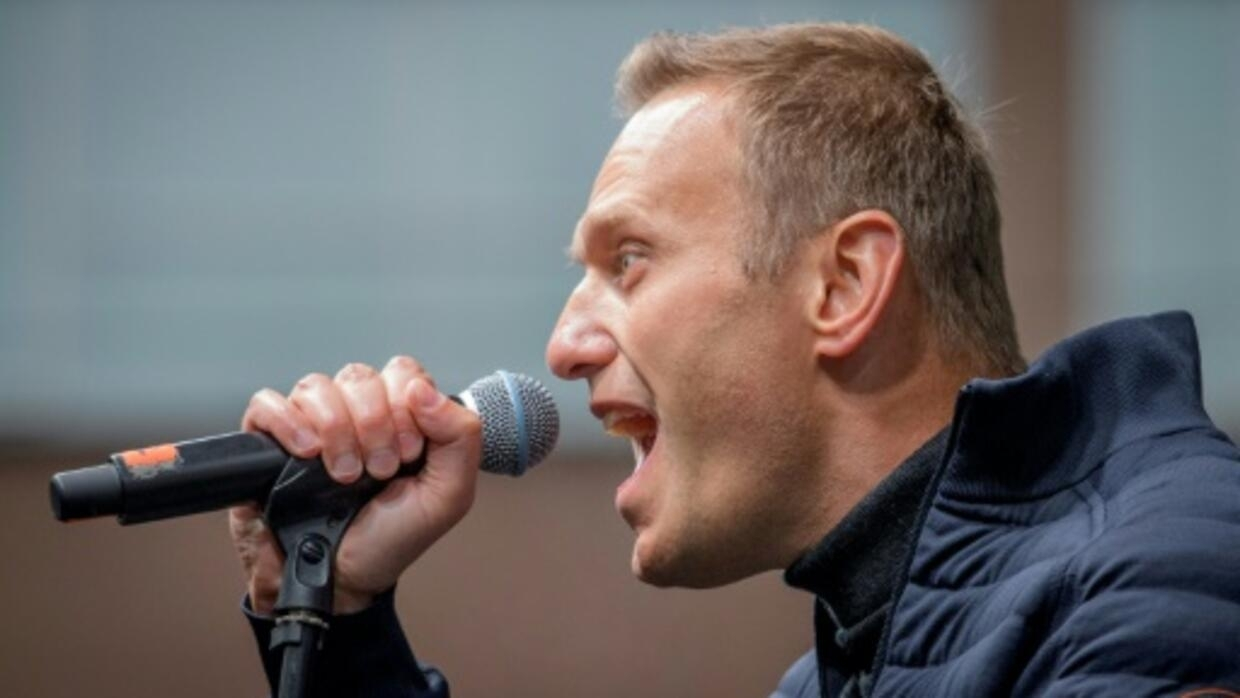 Kremlin critic Navalny's group declared 'foreign agent': government