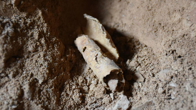 Le morceau de parchemin vierge trouvé dans la grotte Q12 de Qumran.