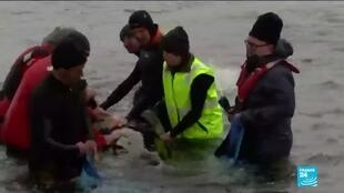 2020-09-22 10:12 Tasmania whales: Rescuers race to save 180 stranded mamals in Australia