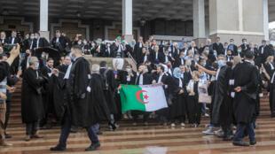 تظاهرة للمحامين أمام محكمة الجزائر في 27 أيلول/سبتمبر 2020