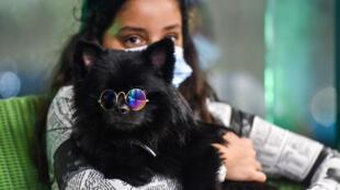 """فتاة تحمل كلبها في مقهى """"باركينغ لوت"""" في مدينة الخبر شرق السعودية في 25 أيلول/سبتمبر 2020"""