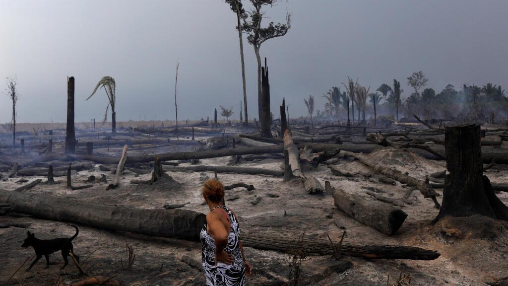 Eliane Muller mira su plantación de yuca en Río Pardo, que quedó devastada por los incendios en la Amazonía causados por la tala ilegal de árboles. Rondonia, Brasil, 16 de septiembre de 2019.