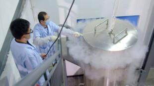 La procédure de cryogénisation de Zhan Wenlian.