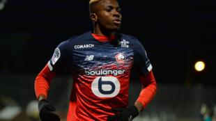 L'attaquant nigérian de Lille, Victor Osimhen, lors du match de Ligue 1 à Angers, le 7 février 2020