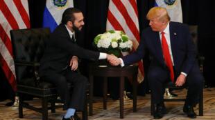 Los presidentes de El Salvador, Nayib Bukele, y de Estados Unidos, Donald Trump, estrechan sus manos durante su reunión en los márgenes de la Asamblea General de la ONU en Nueva York, el 25 de septiembre de 2019.