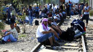 Des migrants dans la ville de Gevgelija, à la frontière entre la Macédoine et la Grèce, le 20 août 2015.