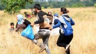مهاجرون يركضون لعبور الحدود اليونانية نحو مقدونيا في 22 آب/أغسطس 2015
