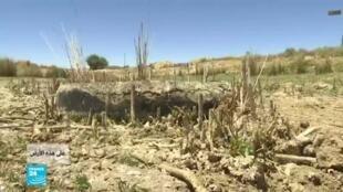 2020-01-04 01:45 على هذه الأرض / الجفاف
