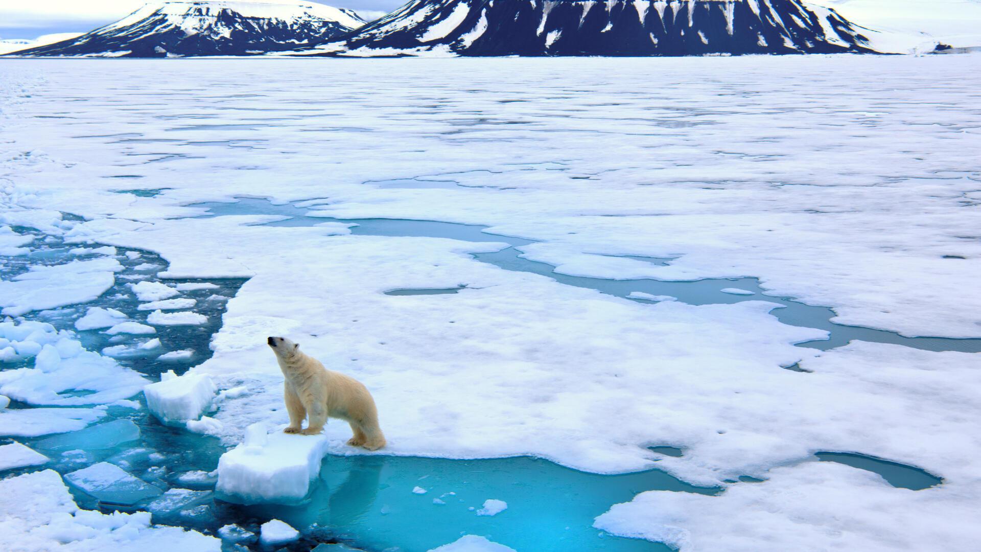 Mayor temperatura en el Ártico tiene efectos en el clima de otras zonas del planeta.