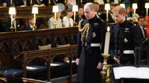 الأمير وليام وشقيقه هاري.