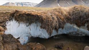 Fonte de permafrost à Svalbard, en Norvège.