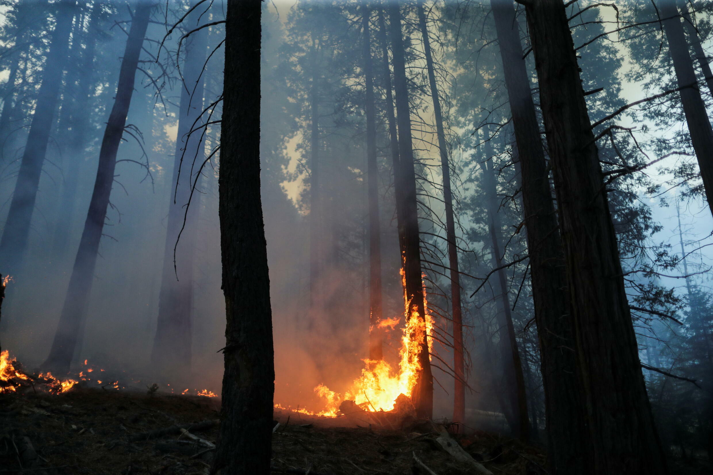 DP_3_USA-WEATHER-WILDFIRES