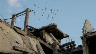 Pájaros vuelan sobre edificios destruidos en el área de Al-Khaldieh en Homs, Siria, el 18 de septiembre de 2018.