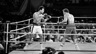 Mohamed Ali affronte George Foreman le 30 octobre 1974 à Kinshasa.