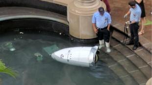C'est une brique qui a tué Steve, le robot de surveillance de Washington. Repose en paix, petit être électronique.