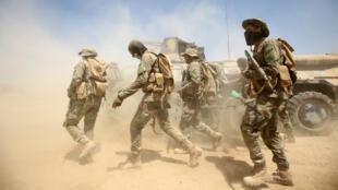 Les forces irakiennes au nord-est de Falloujah, le 26 mai 2016.