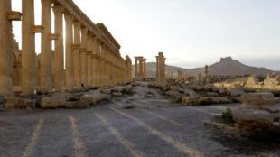 Les jihadistes ont fui Palmyre à l'aube, dimanche 11 décembre 2016.