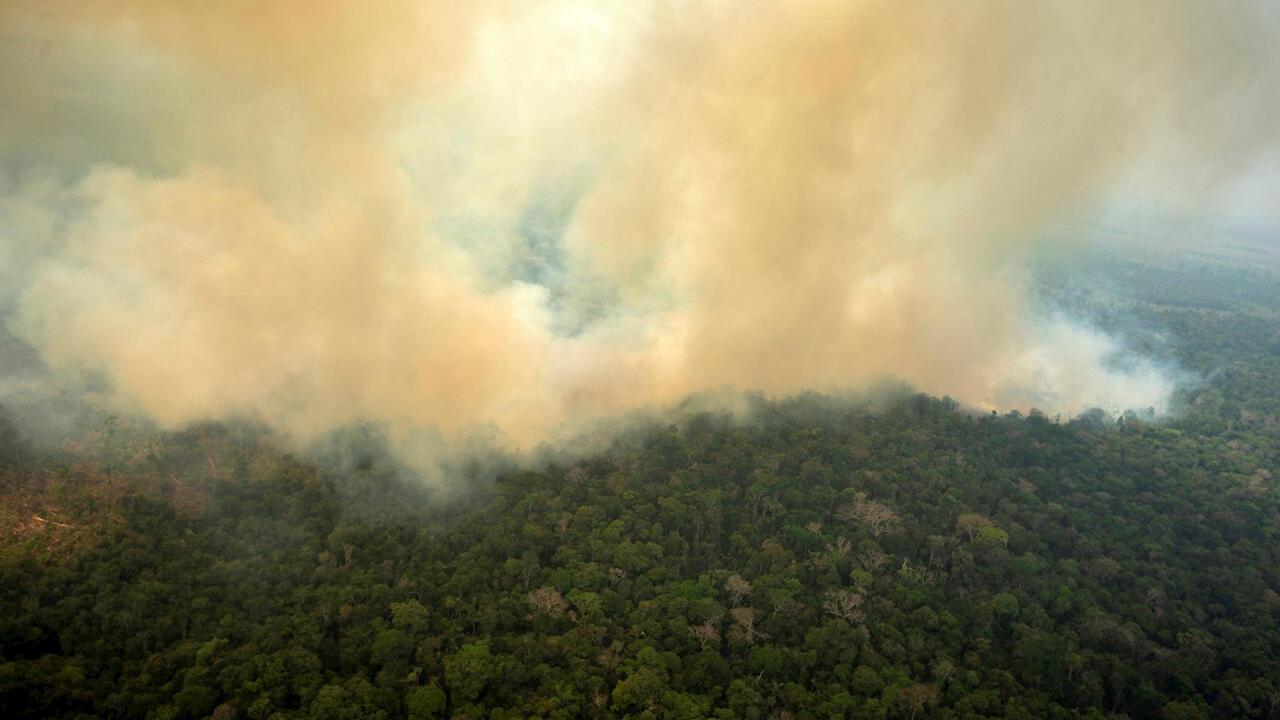 amazonia brasil llamas incendio