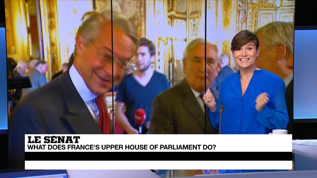 Is the French Senate a retirement club for old politicians? - French
