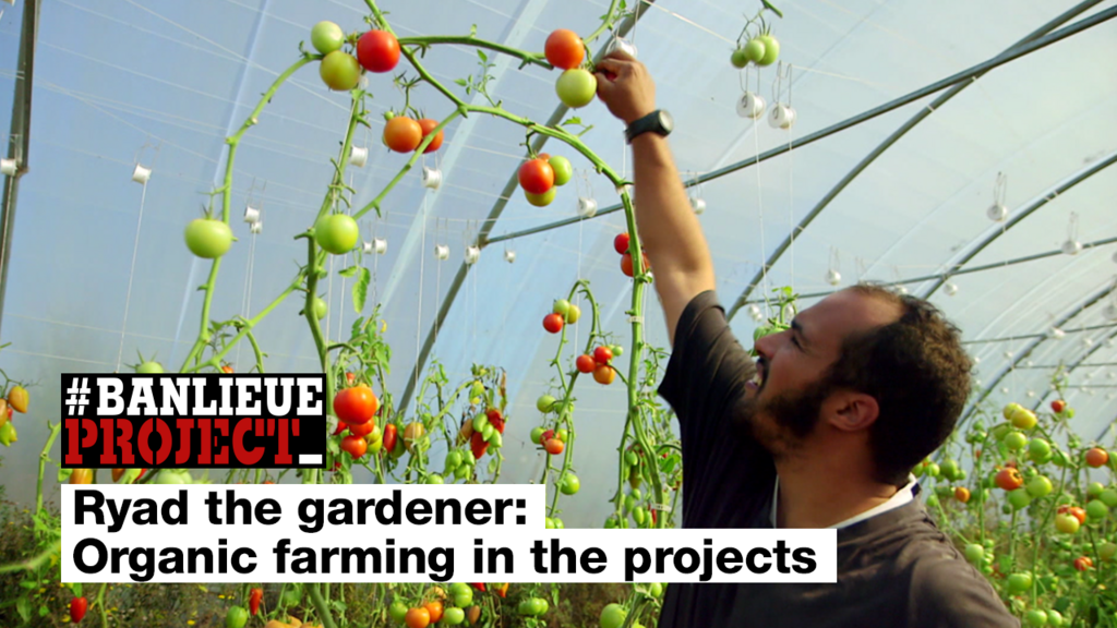Ryad the gardener: Organic farming in the French projects
