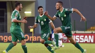 Le joueur algérien Nabil Bentaleb (à droite) célèbre son but contre le Sénégal avec ses coéquipiers, le 27 janvier à Malabo.