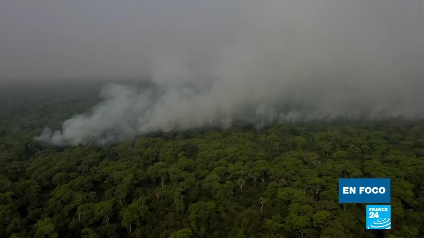 En Foco - Pantanal Brasil incendios