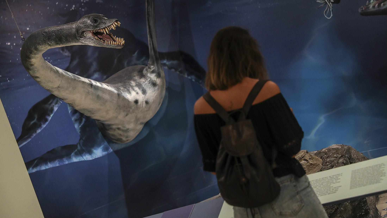 """Una mujer observa los fósiles de un réptil durante la exposición """"Cuando no todo era hielo, nuevos descubrimientos en el continente antártico"""", en el Museo Nacional de Brasil, en Río de Janeiro, el 16 de enero de 2019."""
