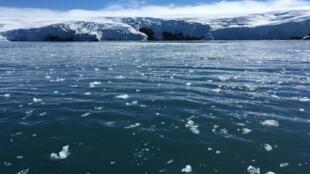 Foto de los glaciares de la isla King George en la Antártida. 1 de febrero de 2018.
