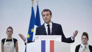 Emmanuel Macron le 11 janvier 2019.