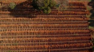 Vista aérea del cementerio de Vila Formosa durante la pandemia del coronavirus COVID-19, en las afueras de Sao Paulo, Brasil, el 20 de julio de 2020.