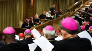 مجمع الأساقفة الكاثوليك حول العائلة في الفاتيكان.
