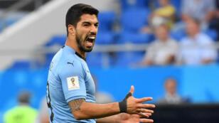 Suarez, mercredi 20 juin 2018, lors du match entre l'Uruguay et l'Arabie saoudite à la Rostov Arena.