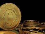 https://www.france24.com/fr/20191114-cryptomonnaie-karatbars-fraude-polemique-allemagne-finance-ponzi