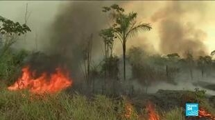2020-07-02 10:03 Brazil's Amazon fires 20% worse one year after international move as region struggles with Covid-19
