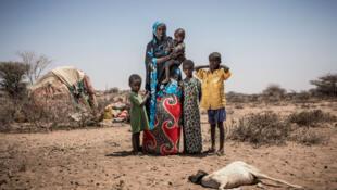 La sècheresse fait mourir le bétail de nombreux bergers, qui doivent abandonner leur vie de nomade pour s'installer près des villes.