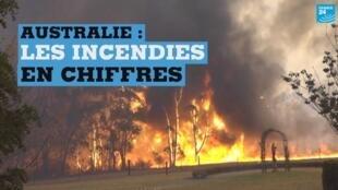 Depuis septembre, l'Australie est ravagée par des incendies.