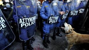 Le chien Loukanikos était présent lors de la plupart des manifestations contre l'austérité imposée à la Grèce.