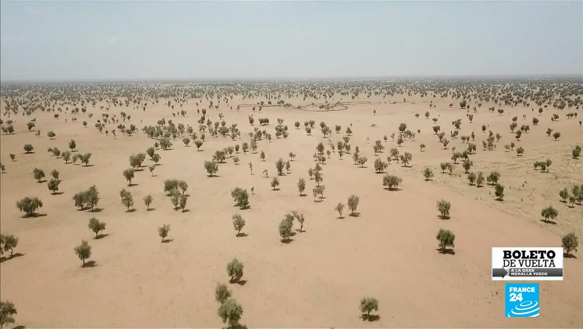 Boleto de Vuelta - Gran Muralla Verde África