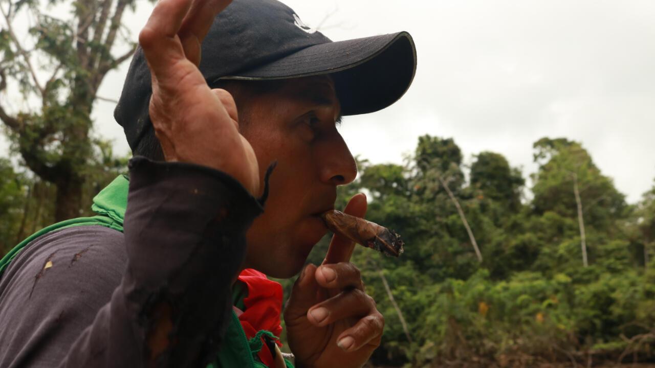 Los siona usan el tabaco para purgarse. Pero además es un elemento fundamental de sus ceremonias. Aquí, en el camino hacia una laguna sagrada cerca a su territorio, el tabaco, dicen, los ayuda a espantar malos espíritus.