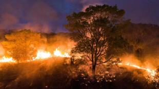 El fuego arrasa el Pantanal, en el estado brasileño de Mato Grosso