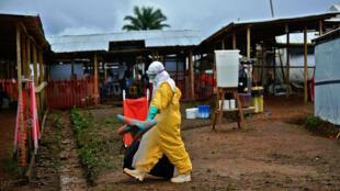 Déjà 491 personnes sont mortes des suites d'Ebola en Sierra Leone.