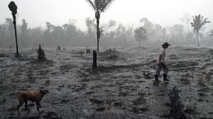Dans une zone de brûlis en Amazonie, le 26 août 2019, près de Porto Velho, au Brésil