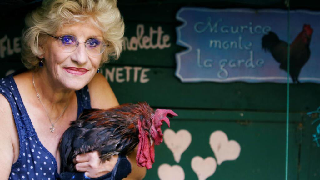 Le coq Maurice, l'affaire de voisinage qui fascine la presse internationale
